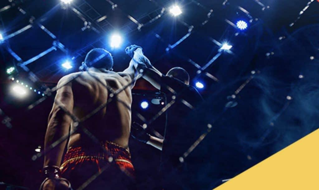 Obstawianie FAME MMA 3. Bonus 50 PLN od LV BET!